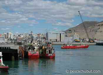 La Cámara de Pesca del Golfo San Jorge asegura que el aumento propuesto al STIA es acorde a la situación del sector - pescachubut.com
