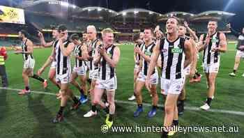 Nathan Buckley relishing AFL juggling act - Hunter Valley News