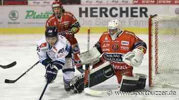 Eispiraten Crimmitschau verlängern mit Michael Bitzer - Sportbuzzer