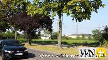 Bundesförderung für E-Ladeparks in Wolfsburg steht - Wolfsburger Nachrichten