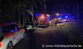 Radfahrer verletzte sich mittelschwer - Region Cham - Nachrichten - Mittelbayerische