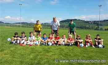 Junge Kicker feilten an ihrer Spieltechnik - Region Cham - Nachrichten - Mittelbayerische