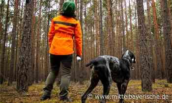 Mehr Forstpersonal ist nötig - Region Cham - Nachrichten - Mittelbayerische
