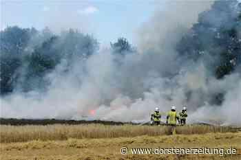 Mähdrescher geht bei Erntearbeiten in Flammen auf - Dorstener Zeitung
