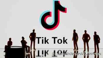 La lista de los 5 adolescentes millonarios de TikTok - El Heraldo de México