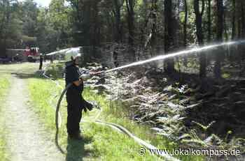 Hohe Gefahr von Flächen- und Waldbränden: Worauf man jetzt achten sollte - Lokalkompass.de