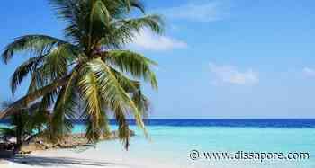 Aviano: giovane cuoco annega alle Maldive durante una vacanza romantica - dissapore