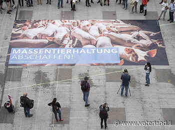 Schärfere Regeln für Halter von Tieren - Vaterland online - Liechtensteiner Vaterland