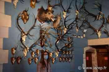 La chasse dans tous ses états au château-musée de Gien, dans le Loiret - La République du Centre
