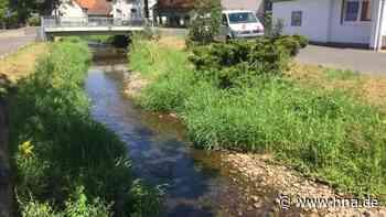 Zu wenig Wasser in den Bächen - hna.de