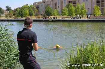 Lognes : les pompiers simulent une noyade pour sensibiliser les jeunes - leparisien.fr