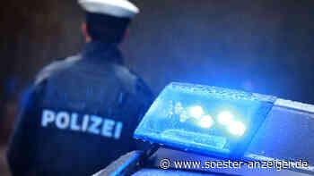 """Lautes Geschrei in Warstein: Eine Adresse, zwei Polizeieinsätze - Randaliererin """"wehrt sich nach Leibeskräf... - soester-anzeiger.de"""