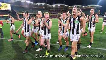 Nathan Buckley relishing AFL juggling act - The Murray Valley Standard