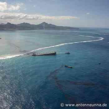 Wut und Trauer: Ölkatastrophe auf Mauritius - Antenne Unna