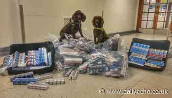 Illegal tobacco operation at Southampton retail premises - Daily Echo