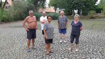 Sécheresse : A Guignemicourt, près d'Amiens, les habitants s'inquiètent pour les canards privés de mare - France Bleu