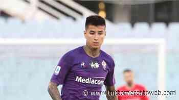 Fiorentina, offerta del Betis da 10 milioni per Pulgar: no dei viola che ne chiedono 15 - TUTTO mercato WEB