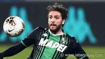 Nazione, Iachini vuole Locatelli alla Fiorentina per rinforzare il centrocampo. I rapporti con il Sassuolo… - Labaro Viola