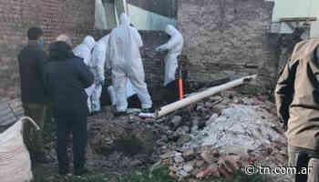 Femicidio en Junín: encontraron enterrado el cuerpo de la mujer que estaba desaparecida hace 18 días - TN - Todo Noticias