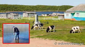 Junín: Buscan recuperar aguas de la industria láctea con bacterias autóctonas - exitosanoticias