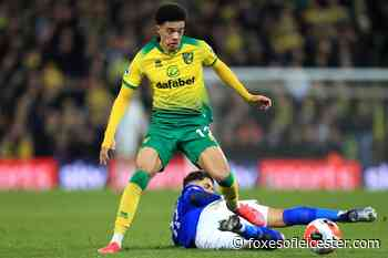 Should Leicester attempt to sign left-back Jamal Lewis? - Foxes of Leicester