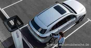 Vergleich von Elektro- und Hybridfahrern: Wer fährt was und warum? - Automobilwoche