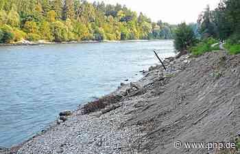 Kleine Schadensreparatur nach Hochwasser - Laufen - Passauer Neue Presse