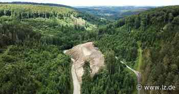 Bauarbeiten an der Gauseköte laufen besser als erwartet | Lokale Nachrichten aus Lippe - Lippische Landes-Zeitung
