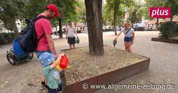 Freiwillige bewässern Bäume der Mainzer Innenstadt
