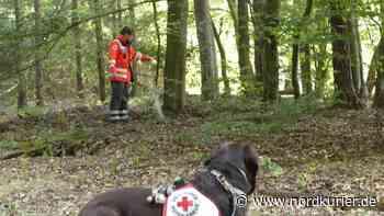 ▶ Dresdner Rettungshunde suchen Vermissten in Schorfheide (mit Video) - Nordkurier