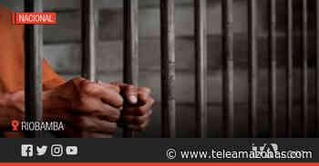 Sentencian a procesados por el crimen del concejal de Riobamba - Teleamazonas