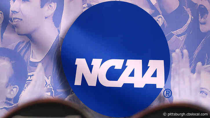 NCAA Cancels Fall Championship Events