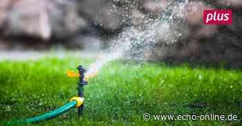 Trinkwasser im Landkreis Darmstadt-Dieburg wird teils knapp - Echo Online