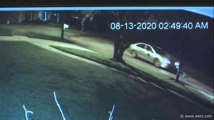 Overnight mail dump caught on home security camera