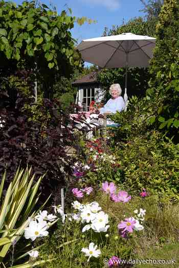 A green-fingered gardener in Ringwood is showcasing his summer garden with soul