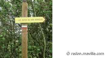 Ercé-près-Liffré. Les rotes dévoilent une diversité de paysages - maville.com