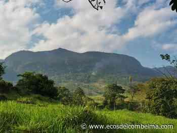 Preocupación en Carmen de Apicalá por aumento de incendios forestales - Ecos del Combeima