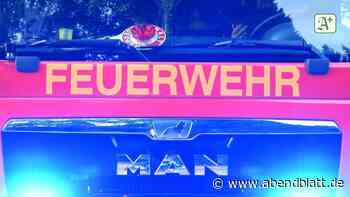 Brände: Feuer zerstört Reetdachhaus: Mindestens 200 000 Euro Schaden