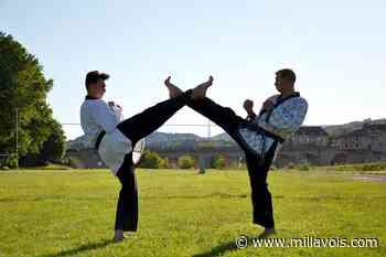 Millau. Bientôt la reprise pour le SOM Taekwondo - Millavois.com