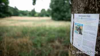 Zwergspitz vor Angriff beschützt: Herrchen ersticht fremden Hund