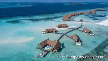 Hotel reopenings: Updated COMO Cocoa Island in the Maldives restarting operations