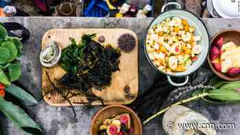 Return to the wild: The chef bringing foraged food to the table - CNN