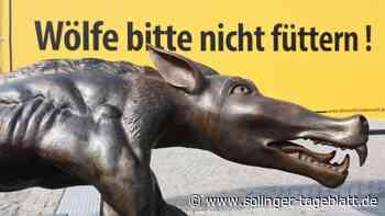 Neumarkt: Wölfe zeigen bewusst ihre böse Fratze
