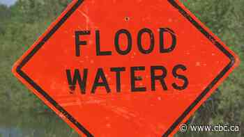 Flood watch issued for southeast Manitoba with heavy rains in the forecast