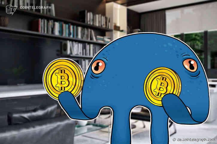 Kraken prognostiziert Bitcoin-Rallye um 200 Prozent - Cointelegraph Deutschland