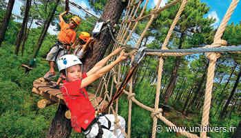 Camp découverte de la forêt Bois le Roi dimanche 23 août 2020 - Unidivers