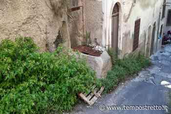 Messina. Via Salita Castellaccio nel degrado. Interviene l'Asp - Tempo Stretto