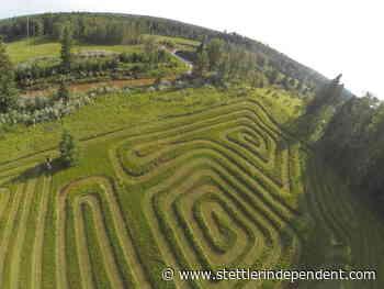 Lacombe resident creates labyrinth near Breton – Stettler Independent - Stettler Independent