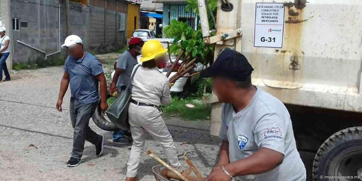 Piden aumentar medidas contra el Dengue en Salina Cruz - El Imparcial de Oaxaca