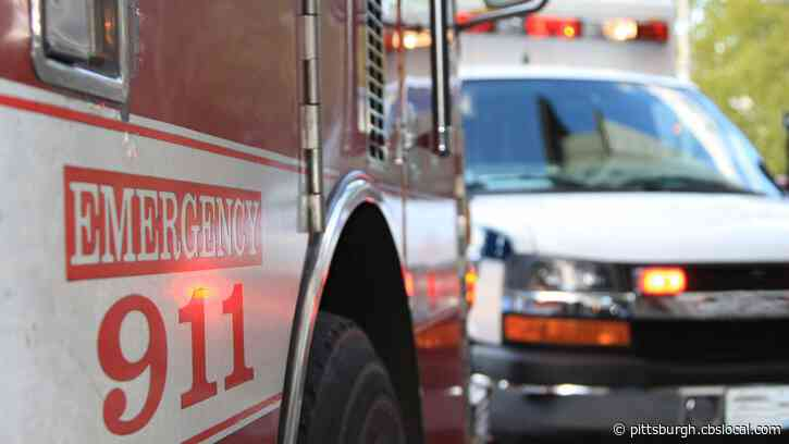 Responders On Scene After Pedestrian Hit By Vehicle In Harmar Township